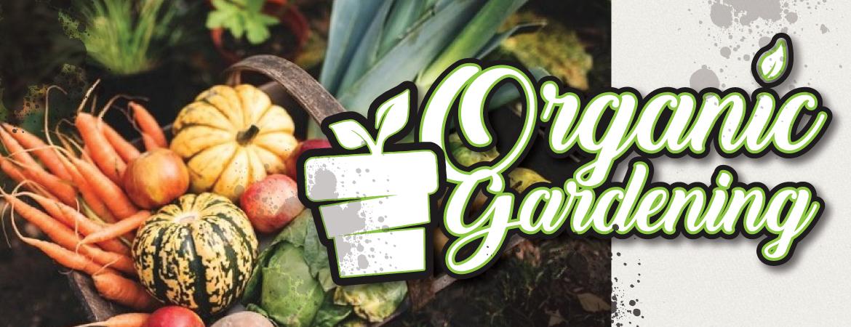 beginner organic gardening